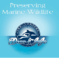 """The Marine Wildlife Foundation"" Dean Bernal & JoJo"